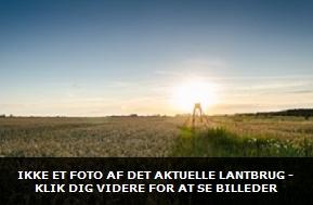 Ikke et foto af det aktuelle lantbrug - klik dig videre for at se billeder